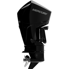 Mercury F 200 L DTS EFI